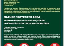 Šuma alepskog u Gornjem Čelu na otoku Koločepu
