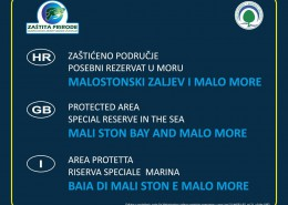 Malostonski zaljev i Malo more