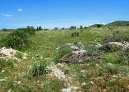 Građevinski otpad u staništu jadranske kozonoške (Himantoglossum adriaticum)