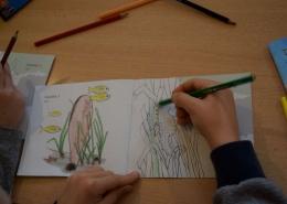 Tjedan prirodoslovlja - edukacija o posidoniji