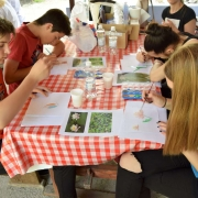 Izrada zelenih razglednica